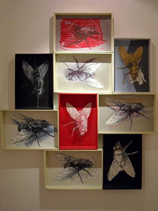 Desert's flys, acrilico carboncino e pennarello su scatole di cartone - Constantin Migliorini