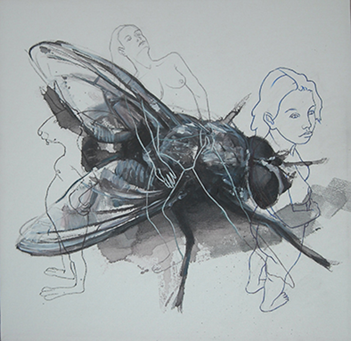 Balcanic Fly, acrilico carboncino e pennarello su tela - 40x40 - Constantin Migliorini